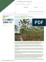 Panduan Budidaya Pohon Gaharu - PT