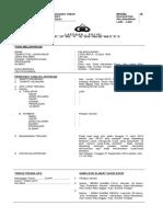 LAPORAN POLISI model B.doc.docx