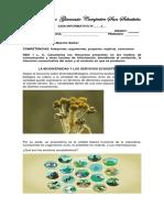 La Biodiversidad y Los Servicios Ecosistémicos