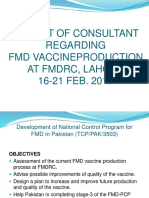 Consultant FMD Report