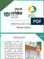 Etapa Regional Do Fórum Nacional de Segurança_Dra. Tatiane Castro