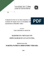 Martha Patricia Hernandez Vergara MAESTRIA
