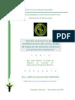 tesis protocolo de cultivo helechos en mexico.pdf