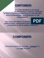 10_Compomeri