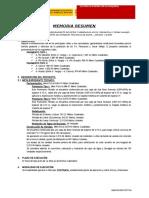 Ayuda Memoria Pensacola.doc