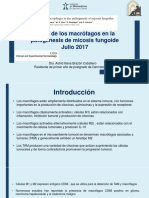 Journal Club - Rol de Macrófagos en MF - Astrid Brazón Caballero