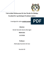 Investigacion Bacteria Microbiologia