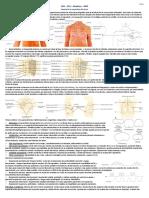 Resumen RMP - 2º Año.pdf