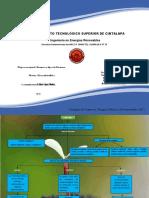 Mapa Conceptual de Biomasa y Tipos de Biomasa.