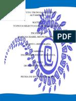 Infografia Estatica y Dinamica en La Web