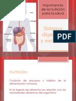 B II_T6 Sistema Digestivo y Excretor