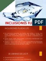 23 INCLUSIONES FLUIDAS.pptx