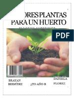 Mejores Plantas Para Un Huerto