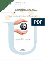 Principios y Estrategias de Gestión Ambiental