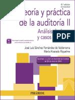 Teoría y Práctica de La Auditoría II Análisis de Áreas y Casos P-1