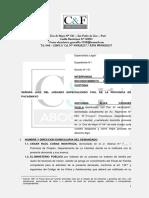 DEMANDA RECONOCIMIENTO DE TENENCIA.docx