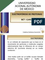 16 Electrofóresis de Proteinas