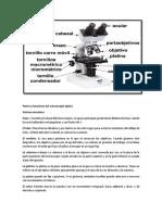 Partes y Funciones Del Microscopio Óptico