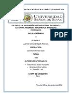 Proyectodeinvestigacinetnogrficadepicsi2 141127180359 Conversion Gate01