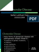 Glomerular Disease Cs