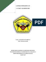 LP CA PARU.docx