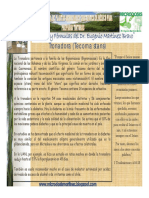 67-Tronadora.pdf