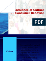 Cultural impact on consumer behaviour