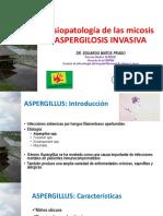 13.1 Enfermedades Micoticas