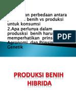 K_3_-_PRODUKSI-BENIH_HIBRIDA