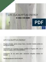 biochar con eucalipto.pdf
