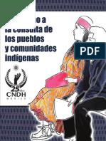 03 Pueblos Comunidades Indigenas