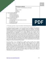 leccion9.pdf