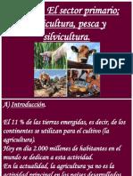 Tema 3; Actividades Agrarias y El Mundo Rural