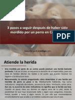 AbogadoContigo - 3 Pasos a Seguir Después de Haber Sido Mordido Por Un Perro en California