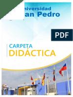 01 CaratulaPioner.pdf