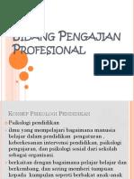 Bidang Pengajian Profesional