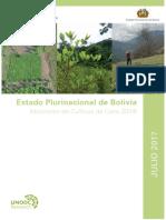 2016 Bolivia Informe Monitoreo Coca