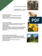 14 FORMAS DE VIDA DE GUATEMALA.docx