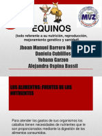 equidos-131012145746-phpapp02