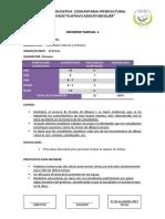 Informe de Evaluacion Rc Primer Quimestre