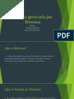 Energia Generada Por Biomasa