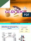 glucidos__1bach