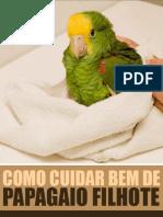 Como Cuidar Bem de Papagaio Filhote
