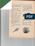 IMG 023.pdf