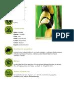 Animales Informacion Biologia
