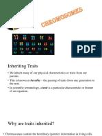 prokaryoticchromosome-structureandorganization-140108025859-phpapp02.pptx