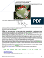Food-Info.net _ Cochineal, Carmine, Carminic Acid (E120)