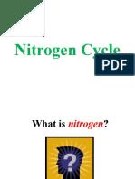 1Nitrogen Cycle