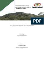 PLAN DE MANEJO Y ORDENAMIENTO TERRITORIAL PARA LA MICROCUENCA DE LA QUEBRADA LA OLABICA.docx