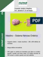 Conexão Intestino - Cérebro e Probióticos
